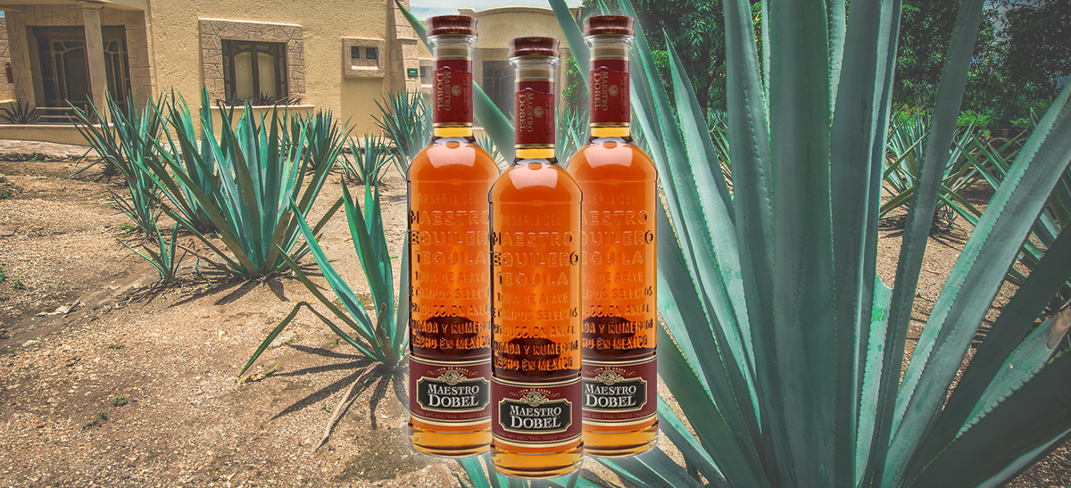 Photo for: Tequila Of The Year Goes To Maestro Dobel Añejo