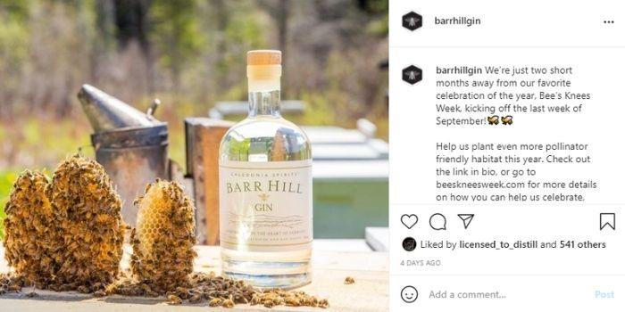 Barr Hill Gin Instagram